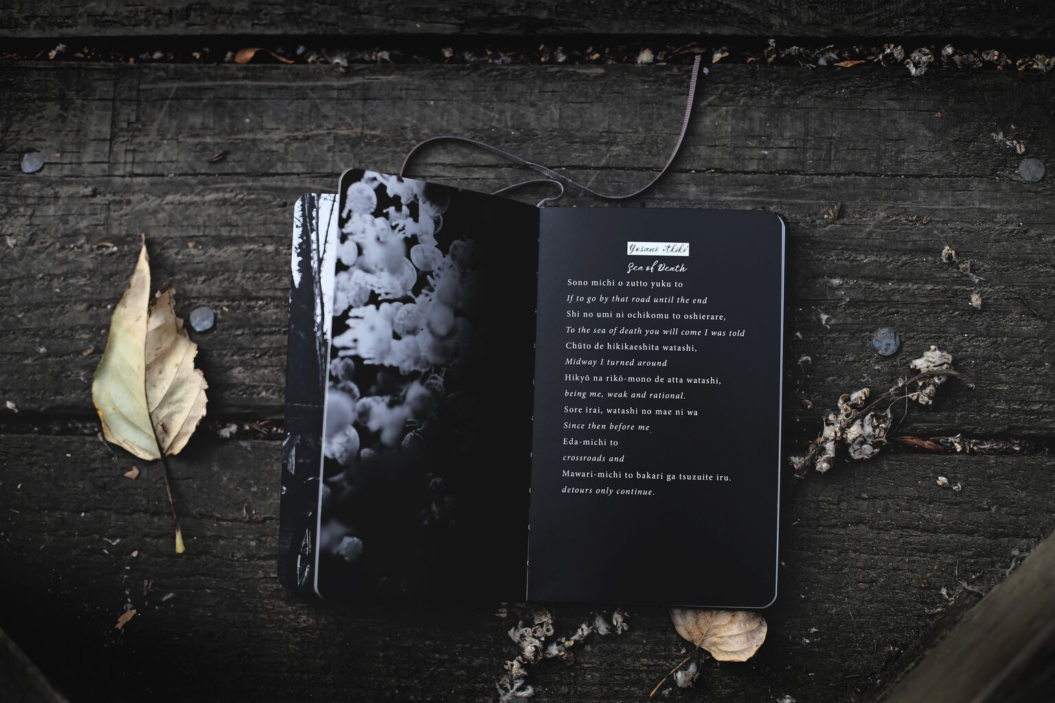dark poetry book