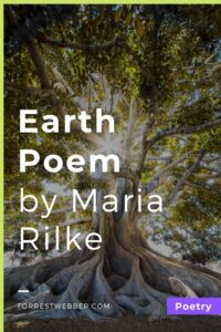 """Earth, isn't this what you want_"" by Rainer Maria Rilke"