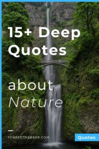 15+ Deep Quotes about Nature, Life, and Seasons